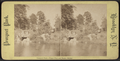Prospect Park. Upper pool and rustic bridge, from Robert N. Dennis collection of stereoscopic views.png