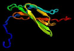 Proteino MERTK PDB 2dbj.png