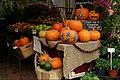 Pumpkins for sale - Surrey - November 2013.jpg