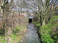 Pymme's Brook in East Barnet - geograph.org.uk - 151022.jpg