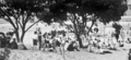 Queensland State Archives 1140 Beach scene Maroochydore January 1931.png