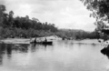 Queensland State Archives 1393 Barron River near Kuranda NQ c 1935.png