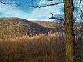 Quehanna Wild Area Dissected 2.jpg