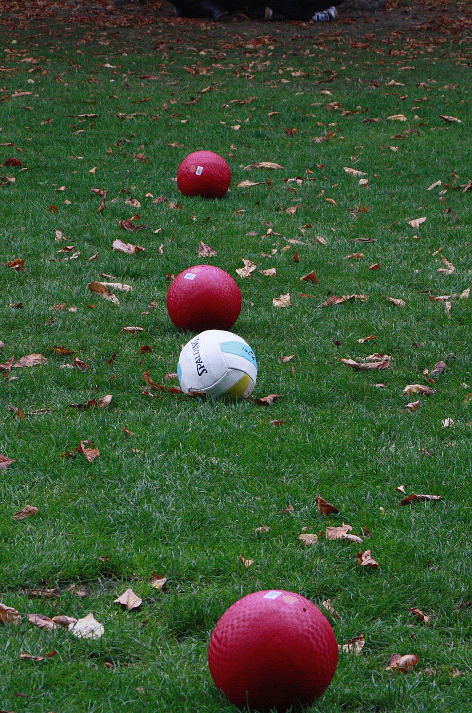 Quidditch Balls Lined Up Smalle