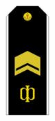 RAF N R8SCPO 1994-2010par