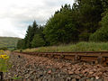 Railway and forest, Dalrigh - geograph.org.uk - 219311.jpg