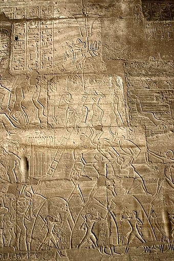 The Egyptian siege of Dapur in the 13th century BC, from Ramesseum, Thebes Ramesseum siege of Dapur.jpg