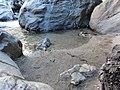 Rattlesnake at Pfeiffer Big Sur - panoramio.jpg