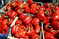 Red Peppers (Alabama Extension).jpg