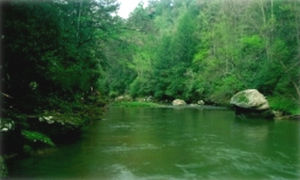 Red River Gorge - Red River in Wolfe County, Kentucky.
