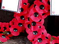 Remembrance Sunday 2008 - 1.jpg