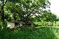 Renhua, Shaoguan, Guangdong, China - panoramio (365).jpg