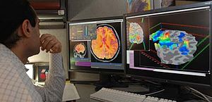 Researcher checking fMRI images.