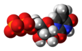 Ribothymidine diphosphate anion 3D spacefill.png