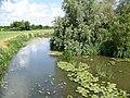 River Stour near Marnhull - geograph.org.uk - 1359200.jpg