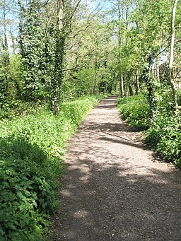 Riverside path running parallel to Liss railway station - geograph.org.uk - 1273525
