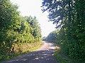 Road, Ludchurch - geograph.org.uk - 1368642.jpg