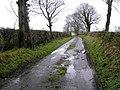 Road at Ballynagalliagh - geograph.org.uk - 622931.jpg