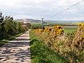 Road to Nydie Mains - geograph.org.uk - 168633.jpg