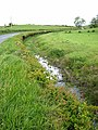 Roadside ditch near Wigtown - geograph.org.uk - 448133.jpg