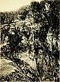 Rock-climbing in the English Lake District (1900) (14777377955).jpg