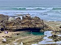 Rock Pool, Bridgewater Bay, Blairgowrie, Victoria, Australia 06.jpg