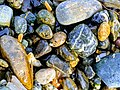 Rocks on a Beach.jpg