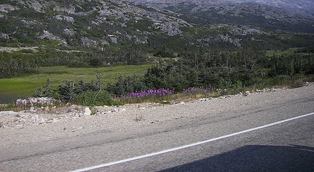 Rocky landscape from Klondike Highway, British Columbia.jpg