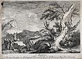 Roman augurs interpreting the flight of birds (?). Etching b Wellcome V0025852.jpg