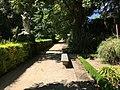 Royal Botanical Garden in Madrid 13.jpg