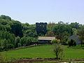 Ruiny zamku w Międzygórzu 2.jpg