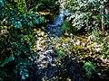 Ruisseau la Barbèche, en amont du pont de Villars-sous-Dampjoux.jpg