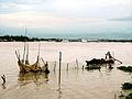 Sông Hậu, đoạn ở Long Xuyên.jpg
