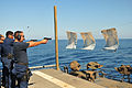 Sailors practice with 9mm pistols at sea..jpg