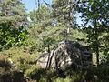 Saint-Pierre-lès-Nemours (77), le Mont Sarrasin par le GR 13, sens est-ouest 8.JPG