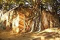 Sala Daeng, Mueang Ang Thong District, Ang Thong 14000, Thailand - panoramio (5).jpg