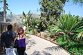 San Diego Zoo Safari Park 83 2014-08-29.JPG