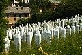 Sarajevo, hřbitov IV.jpg