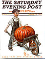 Saturday Evening Post 1913-11-29.jpg