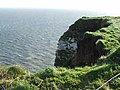 Scale Nab at Bempton Cliffs, nr Bridlington - geograph.org.uk - 369173.jpg