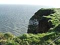 Scale Nab at Bempton Cliffs, nr Bridlington - geograph.org.uk - 369173.jpg