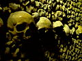 Schädel in den Katakomben von Paris.JPG