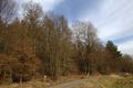 Schlitz Rohrwiesenbachtal und Eisenberg bei Schlitz NR 165214 Meadow Shooting stand Winter.png