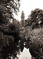 Schlosspark, Charlottenburg, Bild 5.jpg