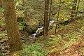 Schonach im Schwarzwald - entlang der Elz Bild 4.jpg