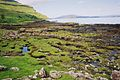Scotland, argyll, isle of mull, loch na keal 37, westview at derryguaig.JPG