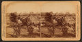 Sea-swept Galveston - A once properous section of beautiful homes near the beach - Disaster 1900, from Robert N. Dennis collection of stereoscopic views.png