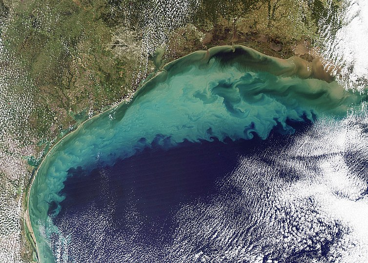 The Gulf of Mexico, which contains a significant nepheloid layer