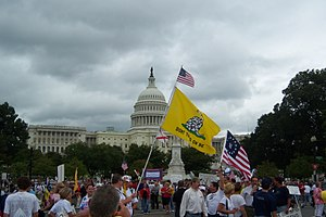 Gadsden flag - The flag at a Tea Party rally in September 2009