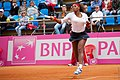 Serena Williams (7105784039).jpg